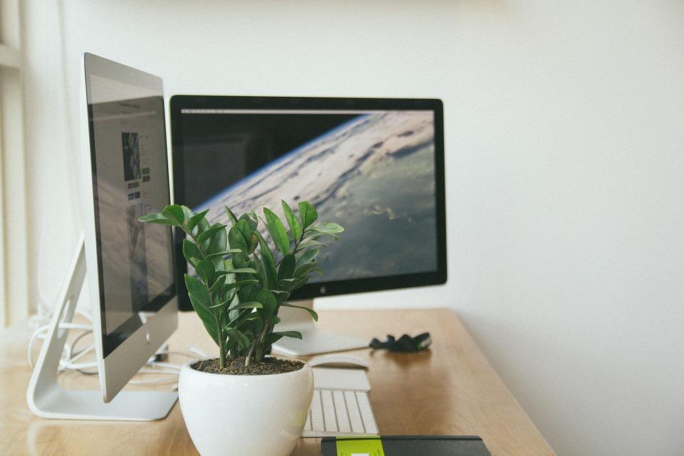 Consejos de diseño para mejorar la productividad en la oficina